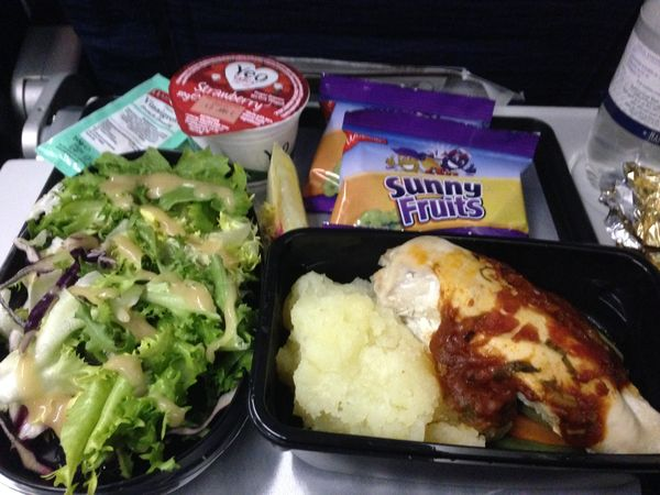 What Type Of Food Can You Bring On A Plane
