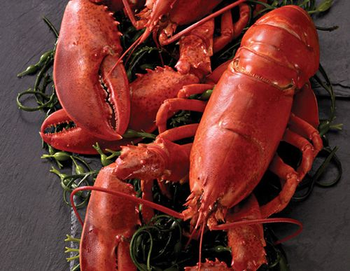Las langostas de Legal Seafoods